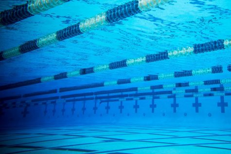 Q & A with the Titan Swim and Dive Team